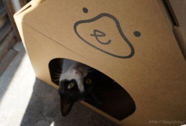 貓飼料推薦●陪心寵糧nu4PET,毛小孩專屬的客製化糧食