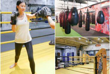 高雄泰拳格鬥中心 | ALMA Muay Plus Center慕泰,一對一泰拳課程